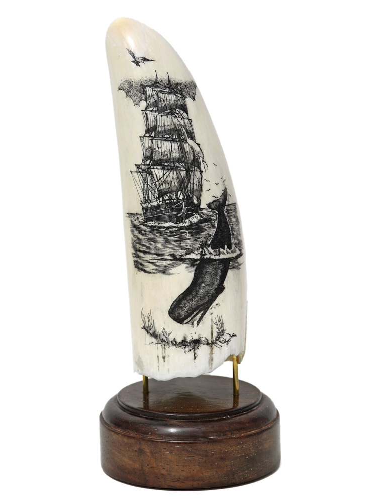 Ware Scrimshaw - Sperm Whale and Ship