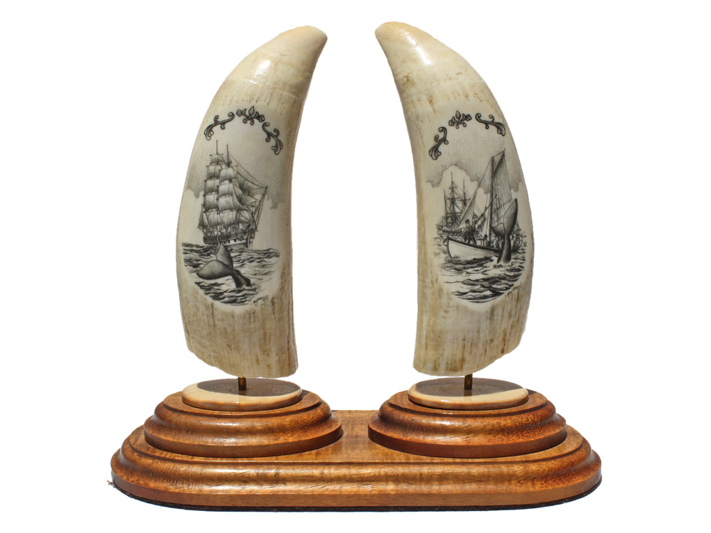 Ray Peters Scrimshaw - Whalers