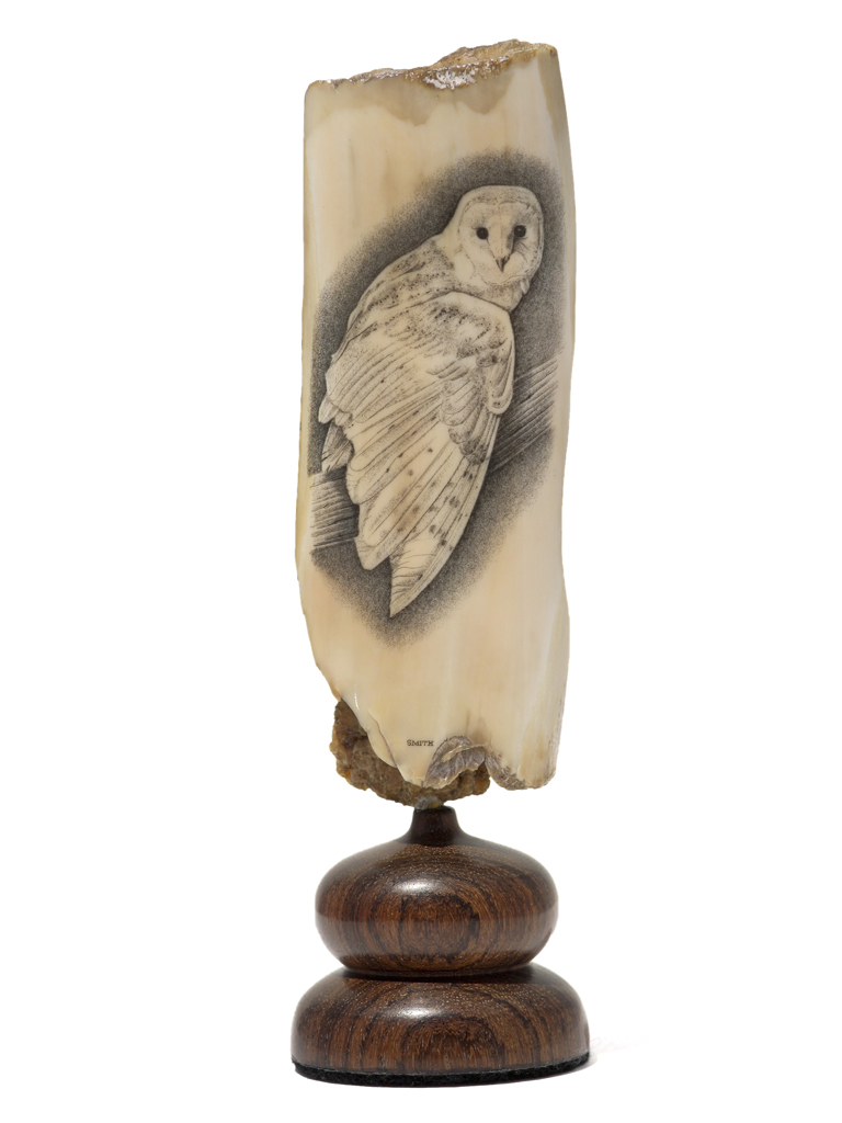 David Smith Scrimshaw - Night Owl