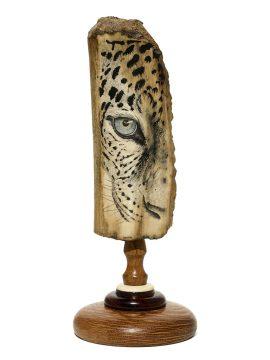 David Smith Scrimshaw - Snow Leopard Closeup