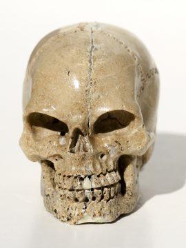 Unknown Artist - Moose Antler Carving - Large Skull