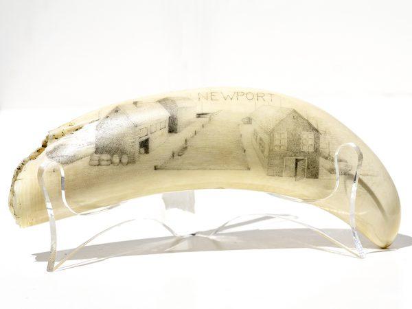 Micklejohn Scrimshaw - Whale Tooth Scrimshaw Newport