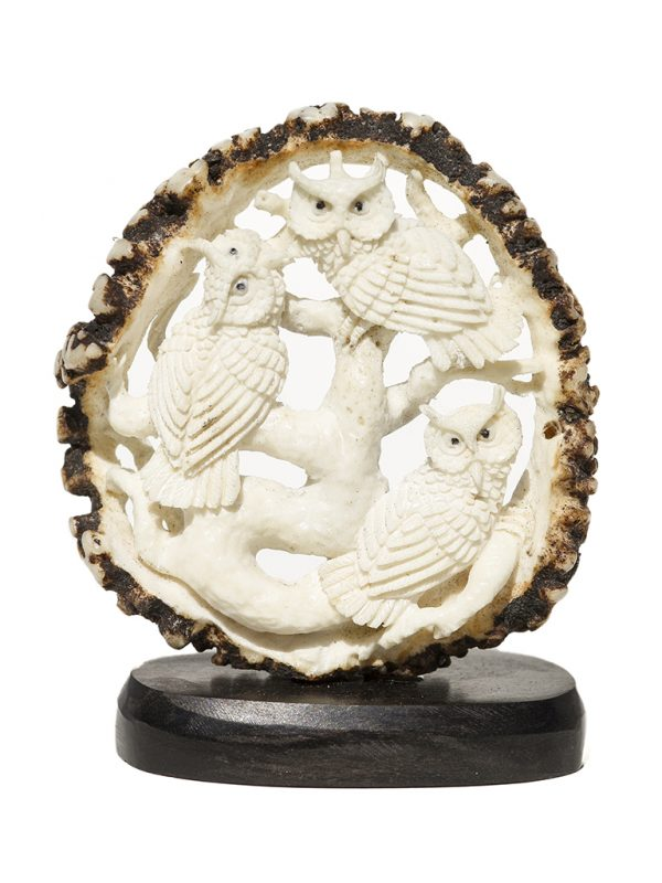 Unknown Carver - Perched Owl Family - Scrimshaw Collector