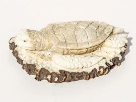 Unknown Artist - Sea Turtle Antler Carving