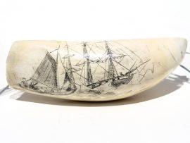 Unknown Artist - Potomac 1849