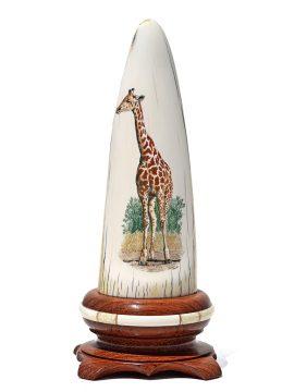 Gary Williams Scrimshaw - Elegant Giraffe