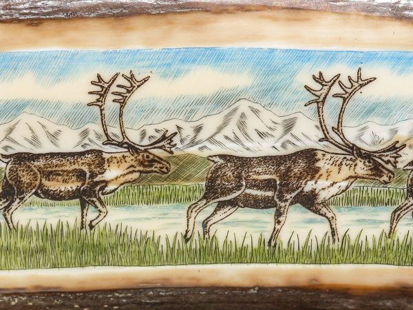 Dennis Sims Scrimshaw - Caribou on the March