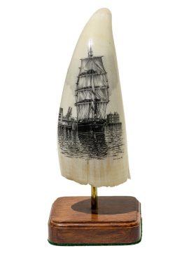 Dan Cronan Scrimshaw - Wanderer Drying Sails