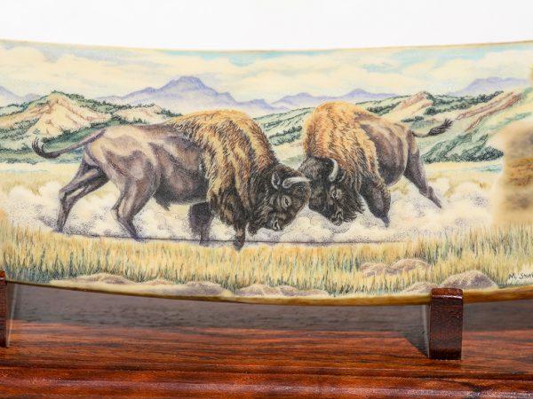 Matt Stothart Scrimshaw - Bison Turf Battle