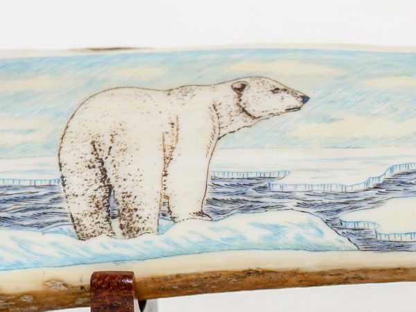 Dennis Sims Scrimshaw - Polar Bear Choosing