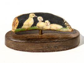 David Adams Scrimshaw - Duckling Trio
